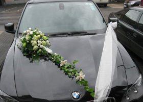 cvjecarnica palma automobili 01