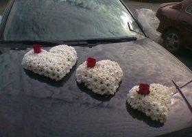cvjecarnica palma automobili 02