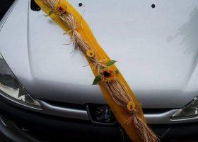 cvjecarnica palma automobili 07