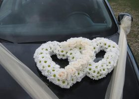 cvjecarnica palma automobili 10