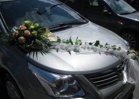 cvjecarnica palma automobili 13