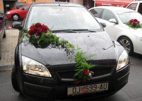cvjecarnica palma automobili 14