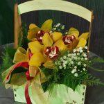 cvjecarnica palma kutija 01